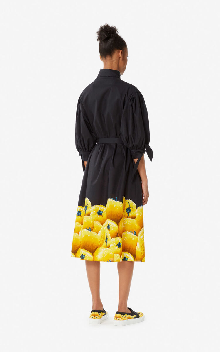 GOLDEN YELLOW 'Tomato' shirt dress for women KENZO