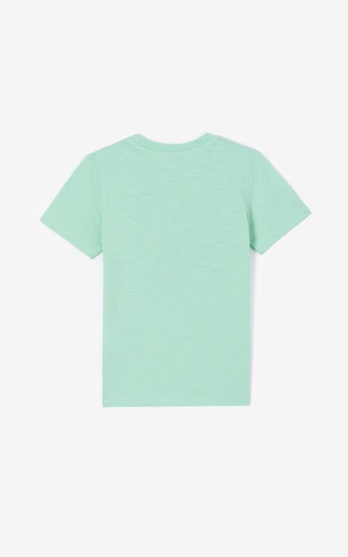 MINT Tiger T-shirt for unisex KENZO