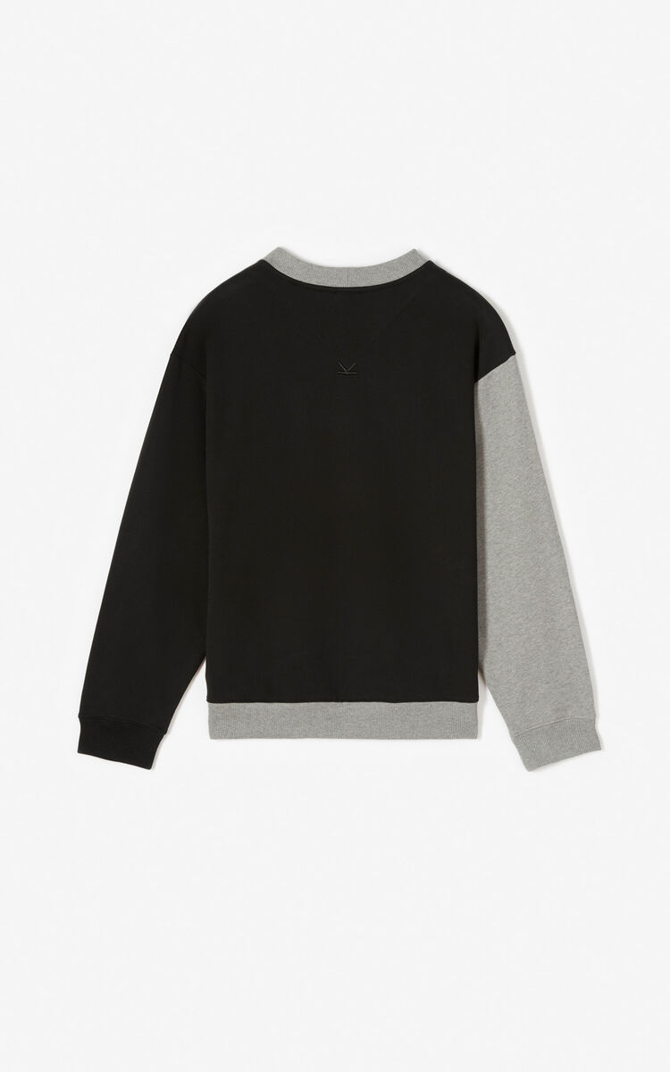 DOVE GREY Colorblock sweatshirt for men KENZO