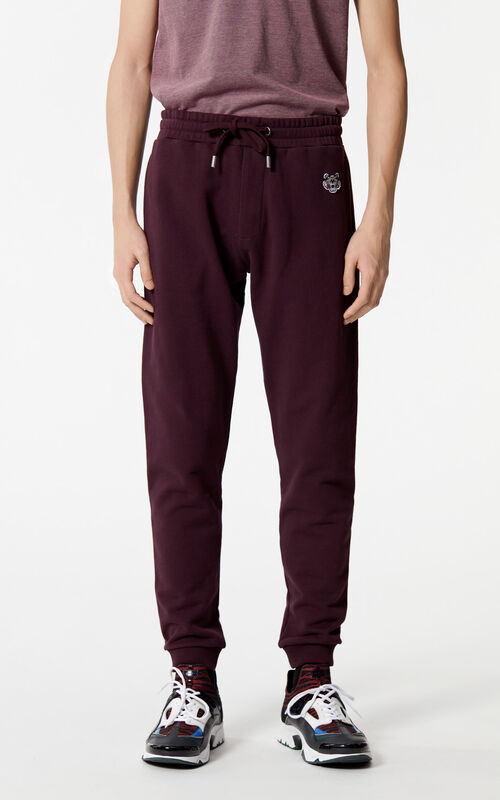 BORDEAUX Tiger joggers for men KENZO