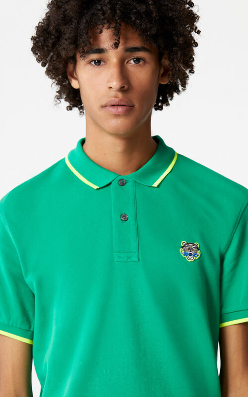 GRASS GREEN Regular Tiger Polo for men KENZO