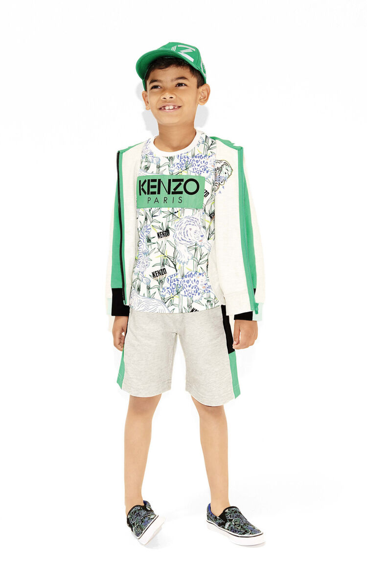 PALE GREY 'Disco Jungle' colourblock shorts for men KENZO
