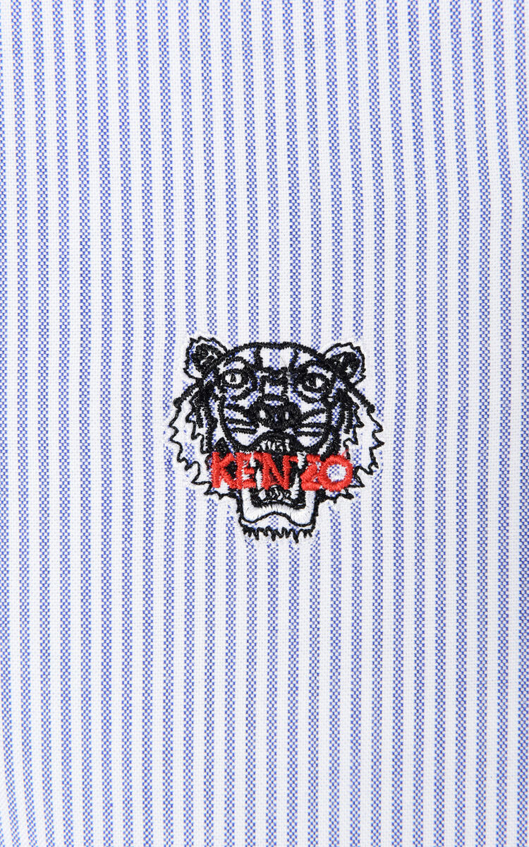 PERRIWINKLE Stripe tiger shirt for men KENZO