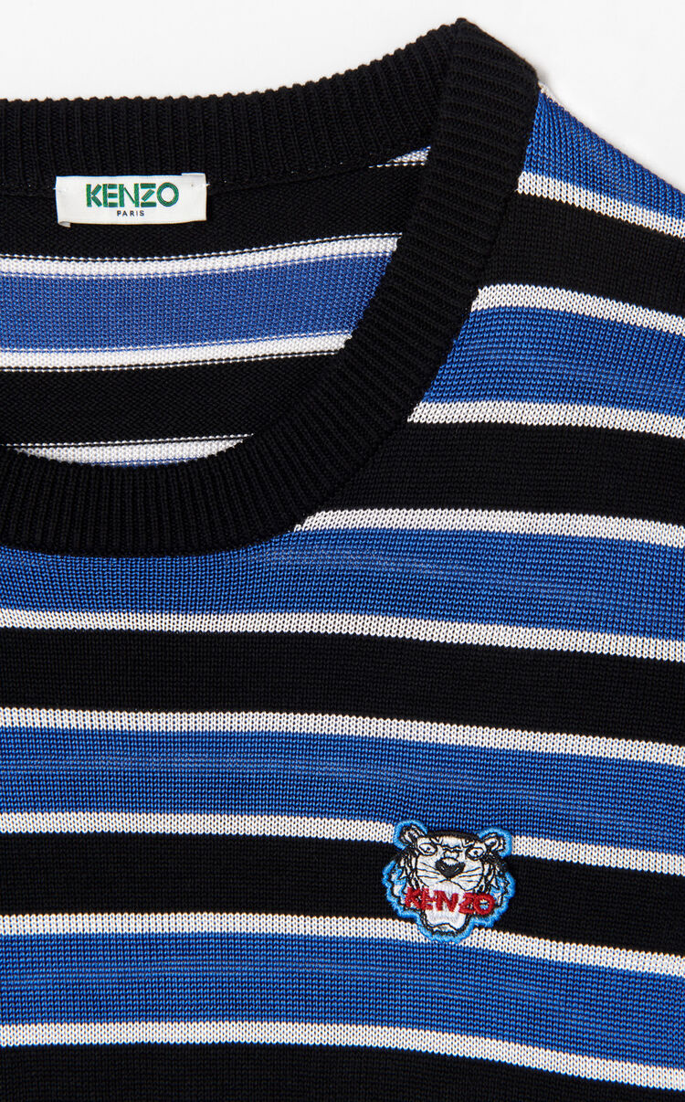 FRENCH BLUE Striped Tiger jumper for women KENZO