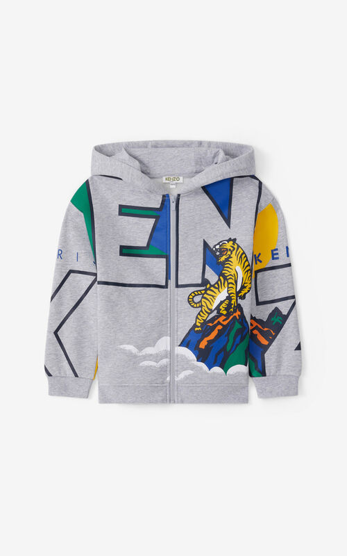 PEARL GREY 'Ventura' hooded zip-up sweatshirt. for unisex KENZO