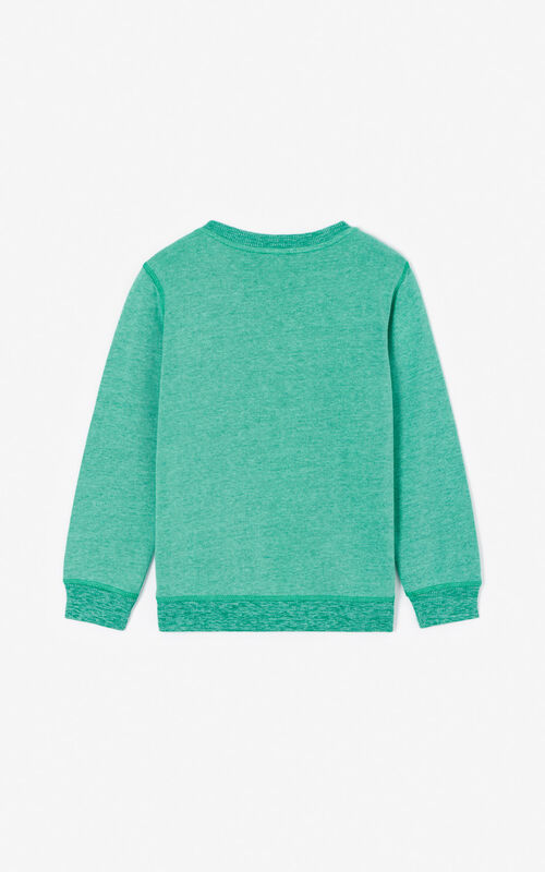 MINT Tiger sweatshirt  for unisex KENZO