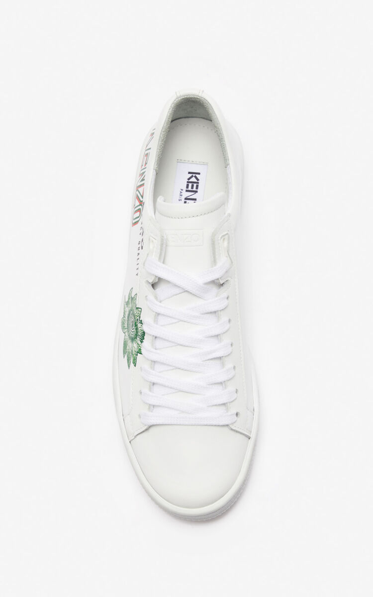 GRASS GREEN 'Rice Bags' Tennix sneakers for unisex KENZO