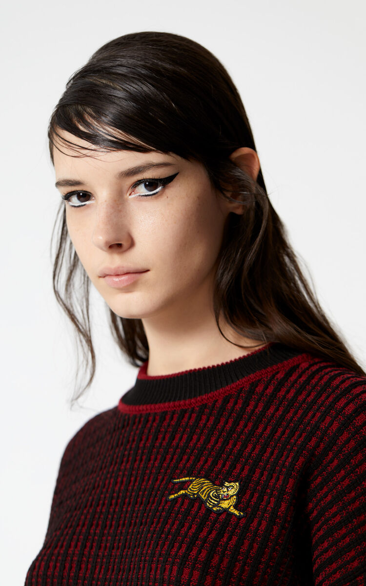 PRUNE 'Jumping Tiger' jumper for women KENZO
