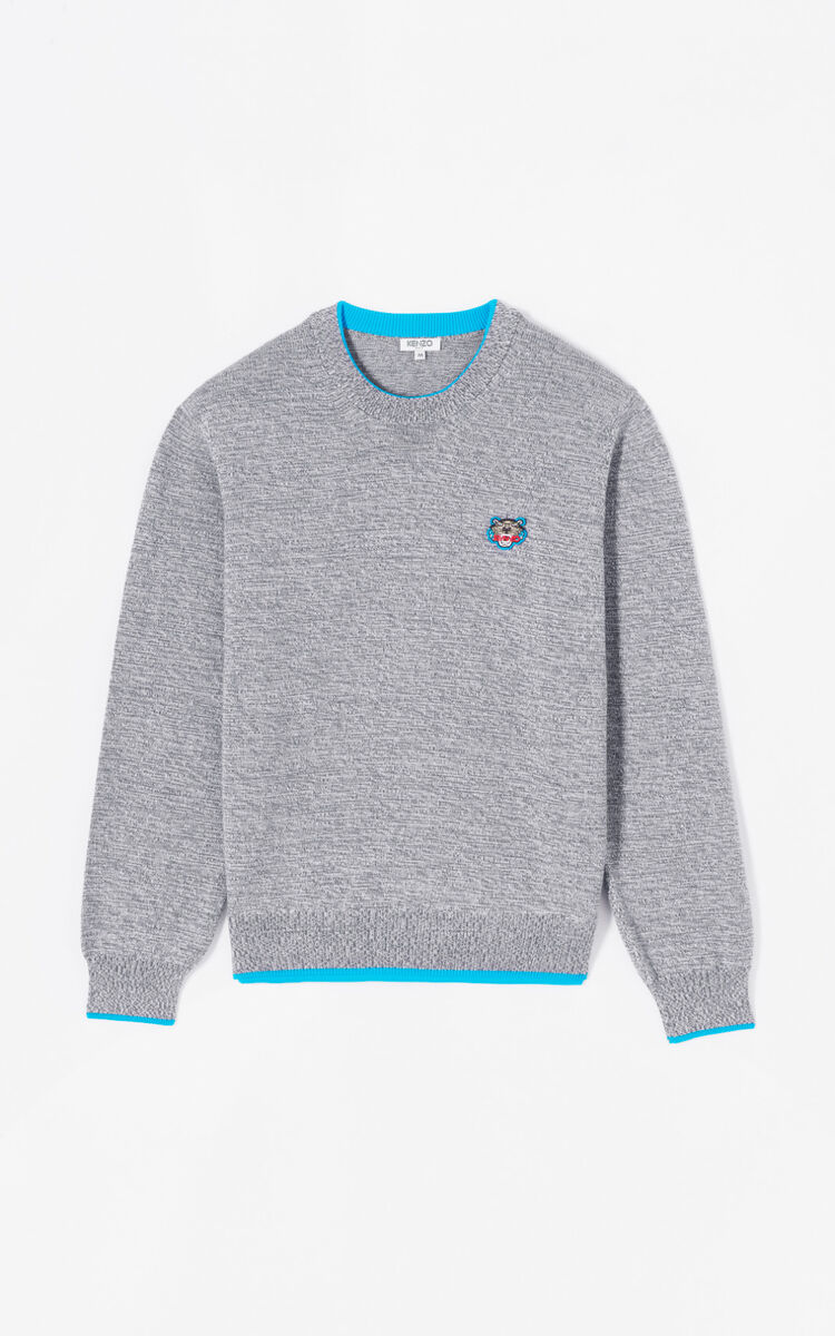 DOVE GREY Tiger jumper for men KENZO