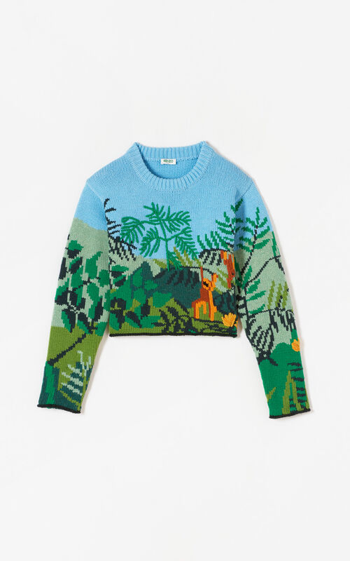 MULTICOLOR Hand-embroidered cropped jumper KENZO