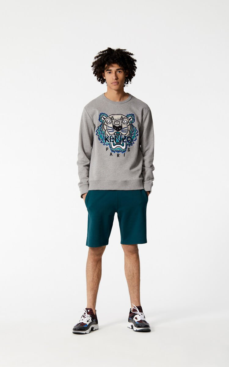 DOVE GREY Tiger sweatshirt は メンズ KENZOのために