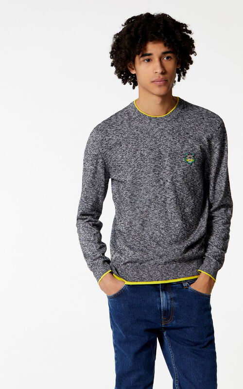 ANTHRACITE Tiger Jumper for men KENZO