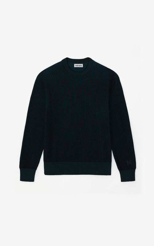 DUCK BLUE Two-tone jumper for unisex KENZO