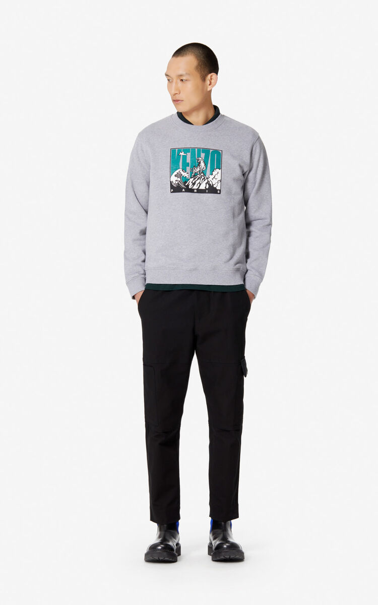 PEARL GREY 'Tiger Mountain' sweatshirt for men KENZO