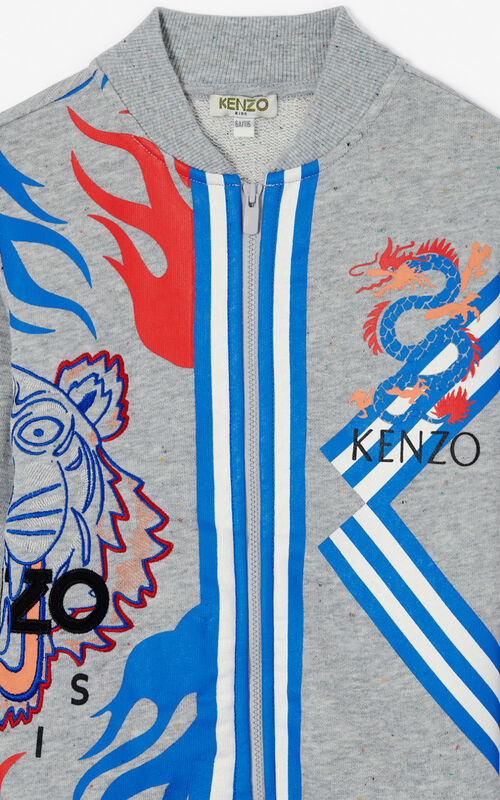MISTY GREY 'Dragon Celebration' zipped sweatshirt for women KENZO