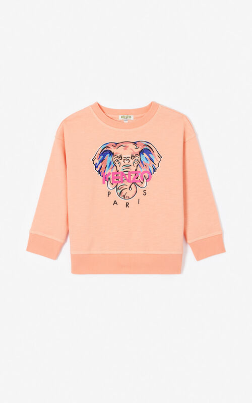 PEACH 'Disco Jungle' T-shirt for women KENZO