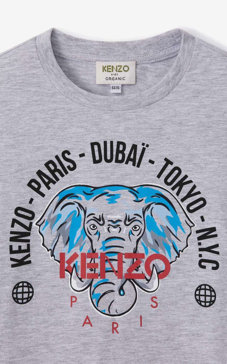 PEARL GREY 'Tokyo' long-sleeved T-shirt for women KENZO
